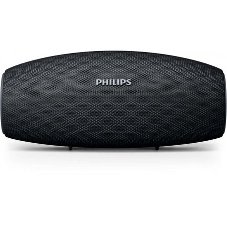 Bluetooth kolonėlė PHILIPS BT6900B/00