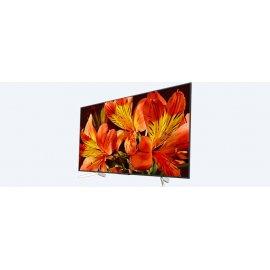 Televizorius Sony KD-65XF8596